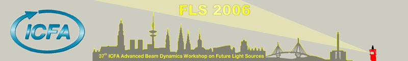 FLS Workshop